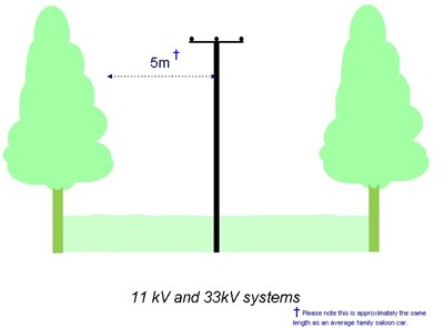 Tree Cutting Clearance - 11 kV and 33 kV systems